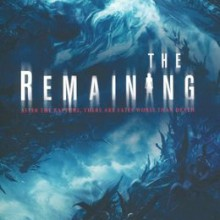the remainding